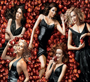 Desperate Housewives 1-8 image 002