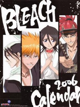 bleach seasons 1-10 dvd box set