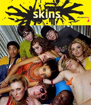 skins seasons 1-4 dvd box set