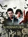 Supernatural Seasons 1-4 DVD Boxset