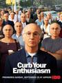 Curb Your Enthusiasm Seasons 1-7 DVD Boxset