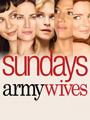 Army Wives Season 4 DVD Boxset
