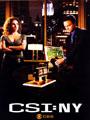 CSI: NY Seasons 1-8 DVD Boxset
