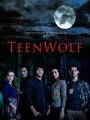 Teen Wolf Season 2 DVD Boxset