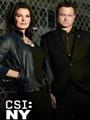 CSI: NY Season 9 DVD Boxset