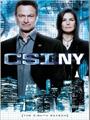 CSI: NY Season 8 DVD Boxset