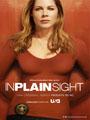 In Plain Sight Season 5 DVD Boxset
