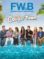 Cougar Town Seasons 1-3 DVD Boxset