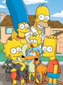 The Simpsons Season 25 DVD Boxset