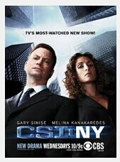 CSI: NY Seasons 1-9 DVD Boxset