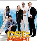 CSI Miami Seasons 1-10 DVD Boxset